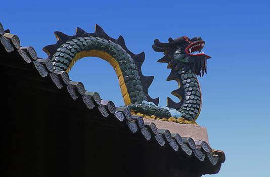 Bao Tang Roof Dragon Ho Chi Minh City  by Rich Walter