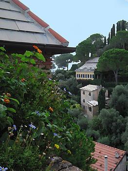 Roof Garden by Paul Barlo