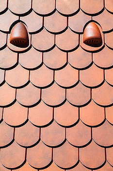 Roof tile pattern orange by Vladimir Jovanovic