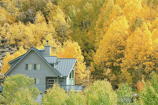 Room with a View - Autumn in Eastern Sierra by Ram Vasudev
