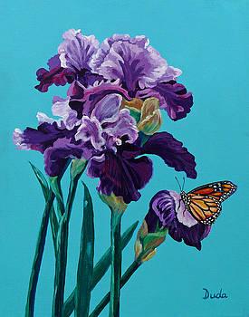 Kim's Iris's with Monarch. by Susan Duda