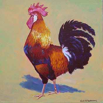 Rooster Brown Leghorn by Tomas OMaoldomhnaigh