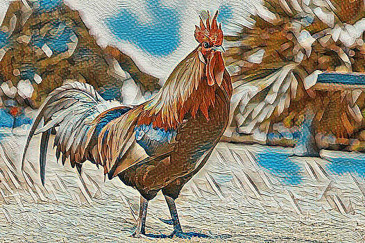 Rooster by Cletis Stump