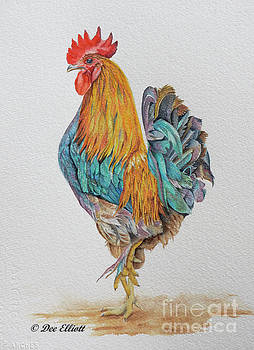 Rooster by Dee Elliott