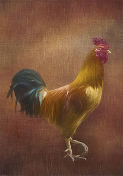 Rooster by Emily Smith