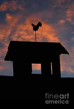 Rooster Weather Vane Silhouette by Henry Kowalski