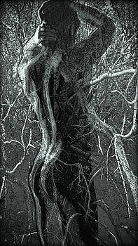 Rooted -2/10 by John Waiblinger
