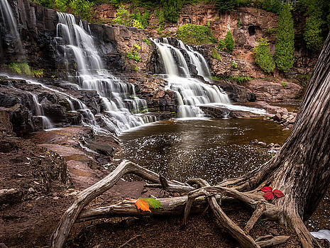 Roots and Cascades by Gary Harris