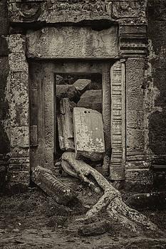 Roots In Ruins 2, Ta Prohm, 2014 by Hitendra SINKAR