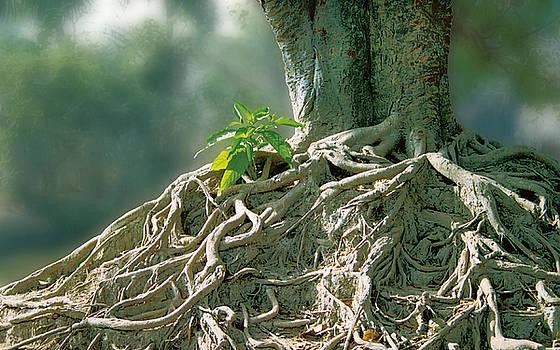 Roots of Life by Subhankar Bhaduri