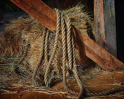 Nikolyn McDonald - Rope - Bale - Barn