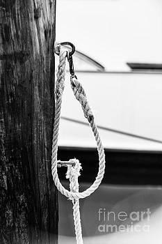 Elena Elisseeva - Rope fence fragment in harbour