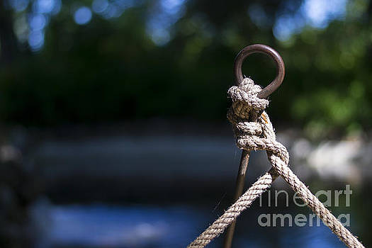 Rope Knot by Stefano Piccini