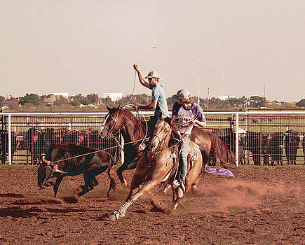 Roping Fever by Suzan Madison Casey