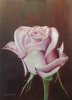 Rosa by Xavier Florensa