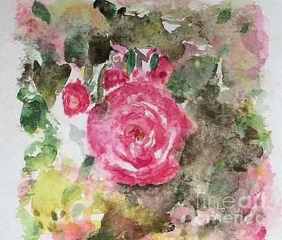 Rosariet by Aase Birkhaug