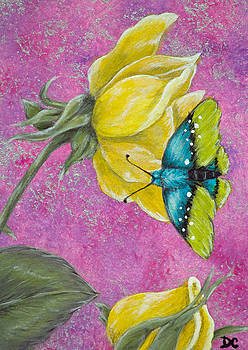 Rose and Butterfly by Deborah Collier