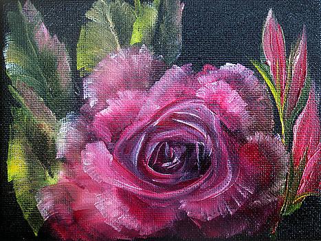 Rose by Ann Marie Bone