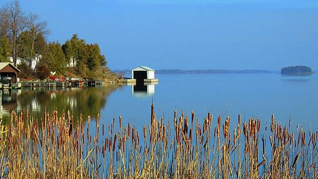 Rose Bay by Dennis McCarthy
