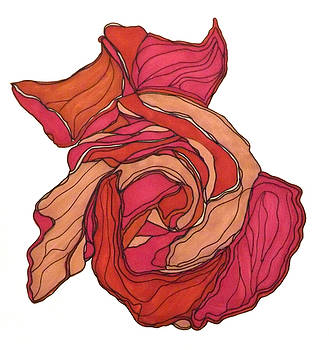 Rose by Baya Clare