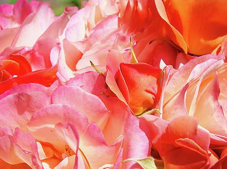 Baslee Troutman - Rose Bouquet Floral art prints Garden Roses Baslee Troutman