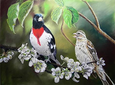 Rose Breasted Grosbeaks by Kathryn Smithson