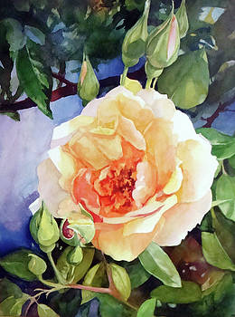 Rose By The Gate by Karen Vernon