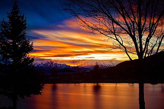 Rose Canyon Dawning by Paul Marto