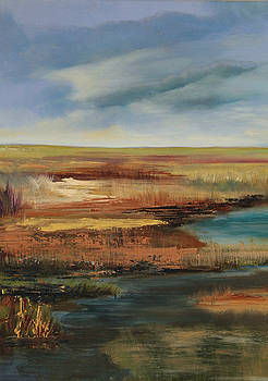 Rose colored marsh by Amy Fissell