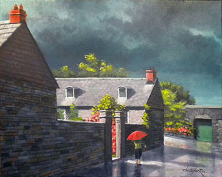Rose Cottage after the rain. Kinsale. Ireland by Christopher Roe