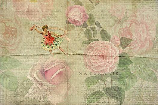 Peggy Collins - Rose Dancer
