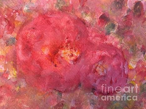 Rose de Paradise by Aase Birkhaug