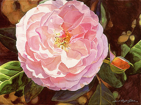 Rose Fantastique by David Lloyd Glover