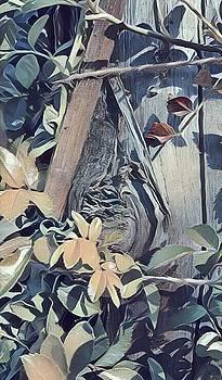 Rose Garden Post 101 by Leonard Rosenfield