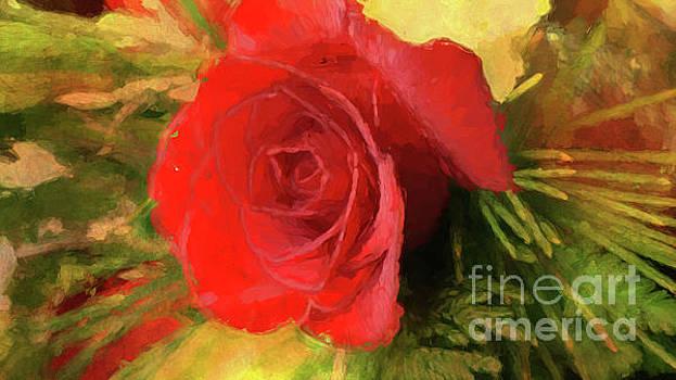 Rose Impression by Geraldine DeBoer