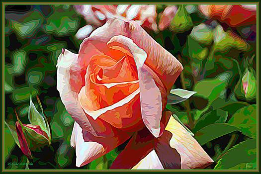 Rose Of The Rainbow by Debra Lynch