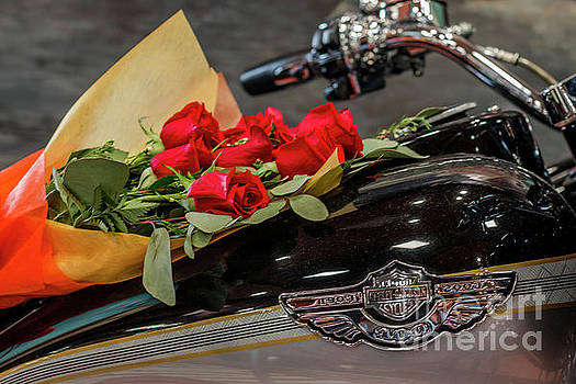 Harley Davidson and Roses by Edie Ann Mendenhall