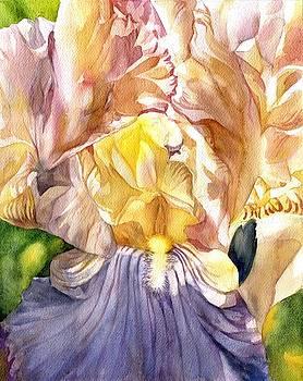 Alfred Ng - rose quartz iris watercolor