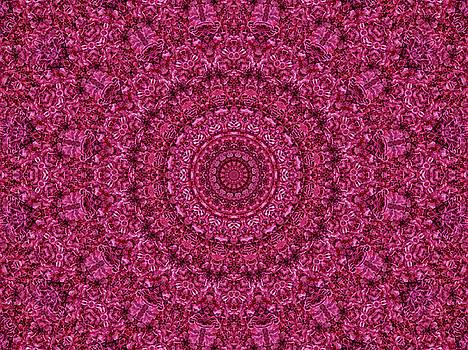 Rose Ruffles Mandala by Lynne Guimond Sabean