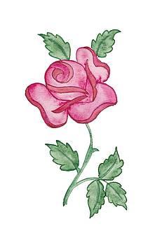 Rose  by Tamara Elliott
