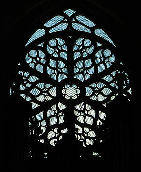 Photographed by Vassil - Rose Window