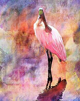 Roseate Spoonbill by Barbara Chichester