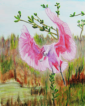 Roseate Spoonbill by M Gilroy
