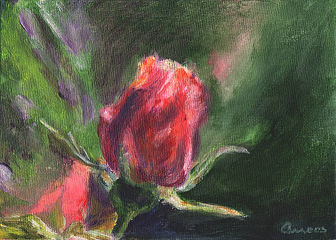 Rosebud by Anees Peterman