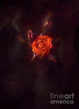 Rosebud by Billie-Jo Miller