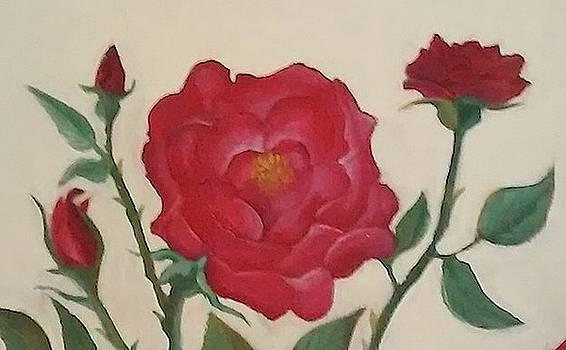 Rosebud Bloomed by Lee Green