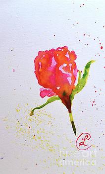Rosebud by Lynda Cookson