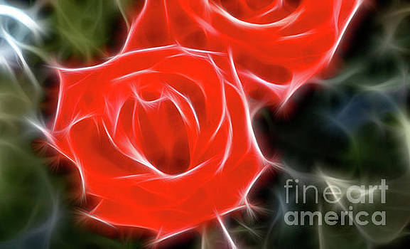Gary Gingrich Galleries - Roses-5850-Fractal