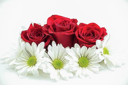 Roses and Daisies by Nancy Kirkpatrick