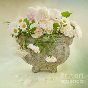 Roses and Daisys by Ma Bu